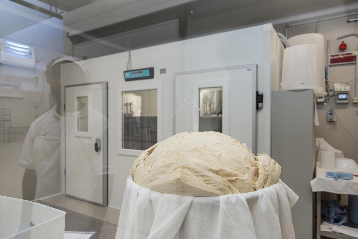 Stabilimento Produzione Panettoni Flamigni – Forlì